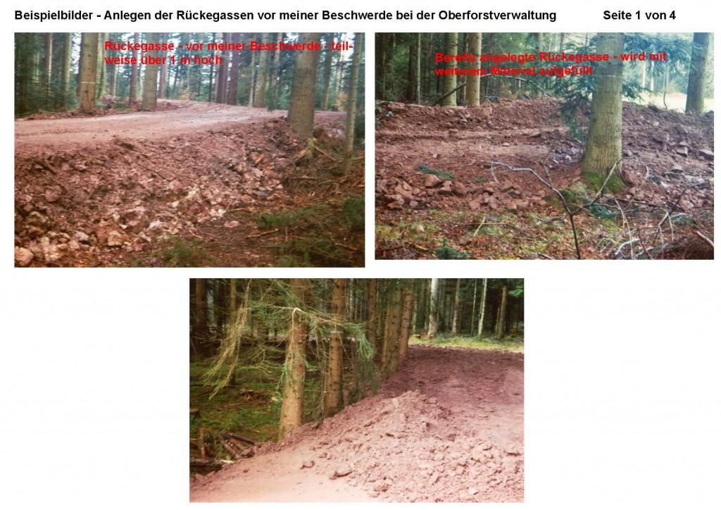 2012-09-05 Beispielbilder der Rückegassen im Verlauf der Maßnahme_Seite_1